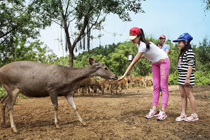 Khu du lịch Madagui Lâm Đồng