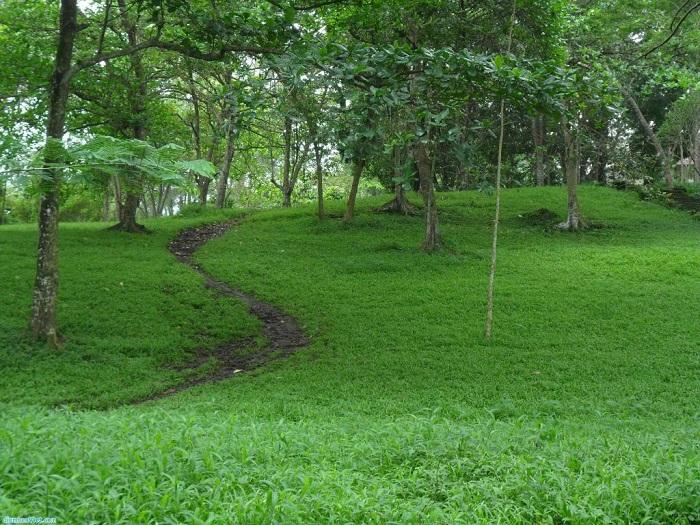 Công viên văn hóa Suối Tre được bao phủ màu xanh tươi mát