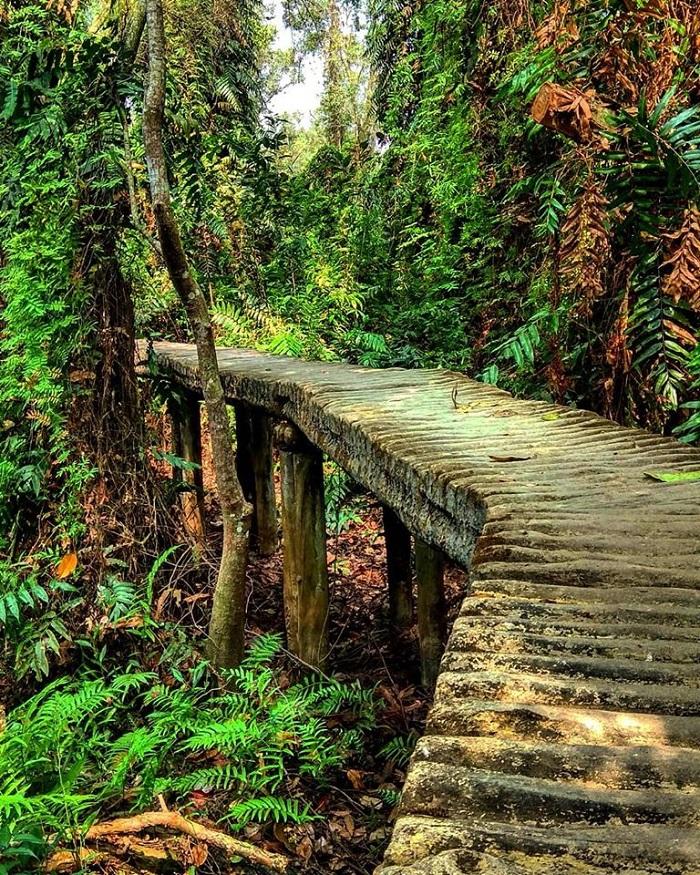 Cảnh sắc thiên nhiên tạo nên bức tranh hoàn hảo cho nơi này