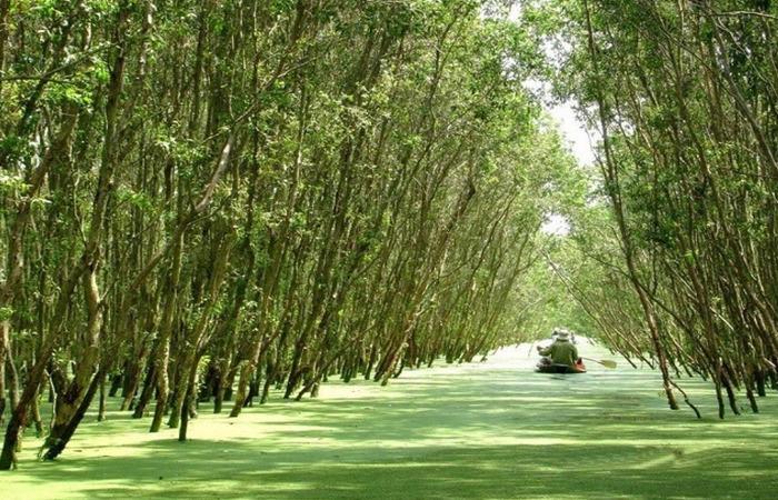 Khu du lịch sinh thái Tây Đô (nguồn Internet)